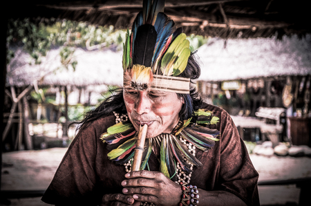 Indigenous Amazonian