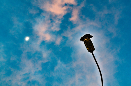Raven standing on a lamppost overlooking the sky and the moon above. Stock Photo