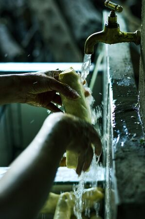 Hands of a young woman washing food before preparing them Stok Fotoğraf