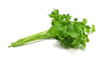 a picture of parsley isolated on white