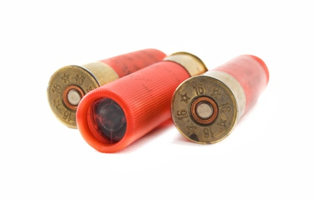 hunting cartridges for shotgun 16 caliber isolated on white background