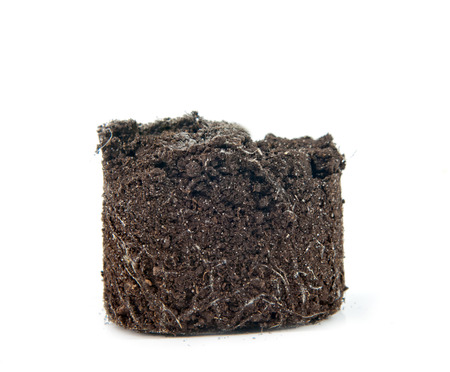 soil isolated on white background photo