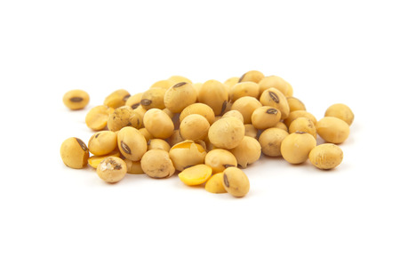 soybean isolated on white background Stock Photo - 35414862