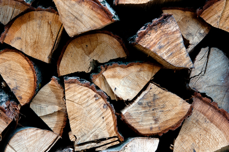 firewood: background of dry chopped firewood logs in a pile
