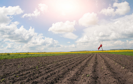 expel: red scarecrow in field under blue sky Stock Photo