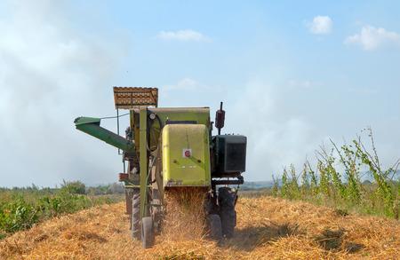 combine harvester working on a oat field