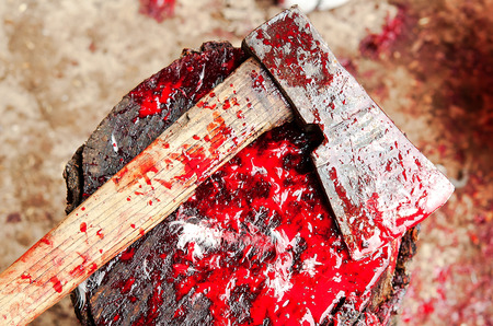 ax: a Bloody Ax close up Stock Photo