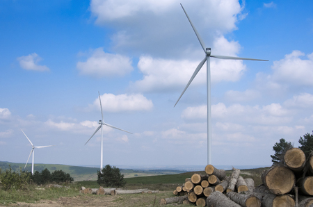 wind turbine farm in forest Banco de Imagens