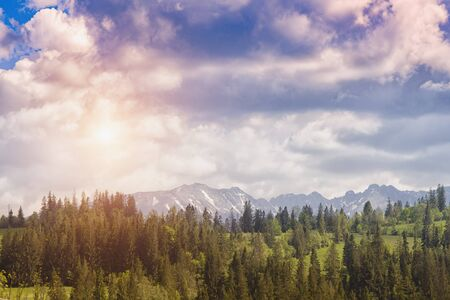 High Tatras mountain autumn sunset. Close up