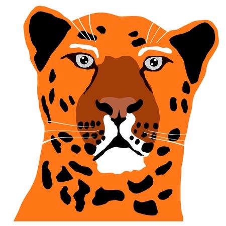 panthera pardus: eopard