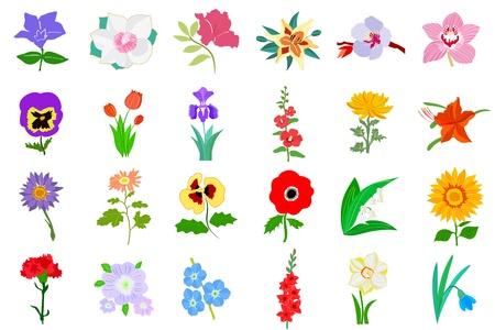 grande e piccolo: Set di illustrazione colorati di fiori