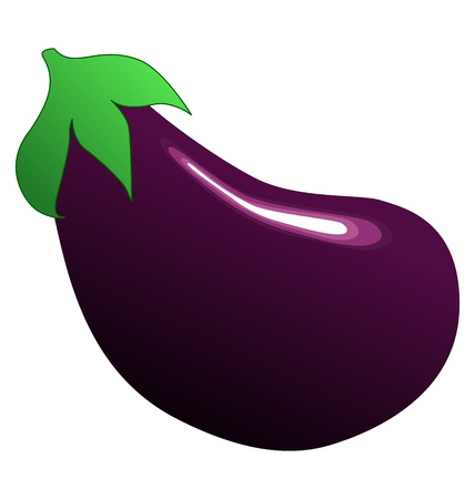 One big eggplant on the white background Vector