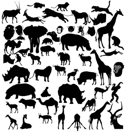 Big set of African and tropical animals Vector