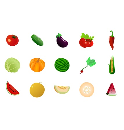 The big set of the different vegetables Vector