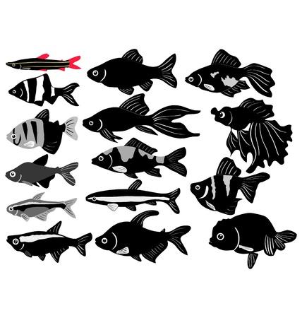 aquarian: The big set of the aquarian fish