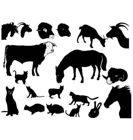 Set of the silhouettes of domestic animals Vector