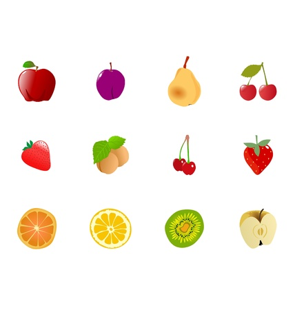The big set of the different fruits Vector