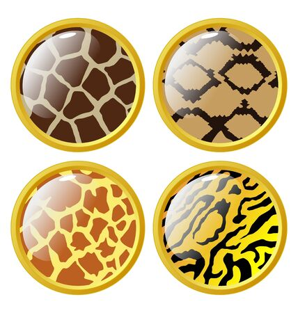 The set of the buttons of animal skins Vector