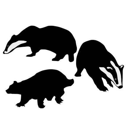 The set of the silhouettes of the badger Ilustracja