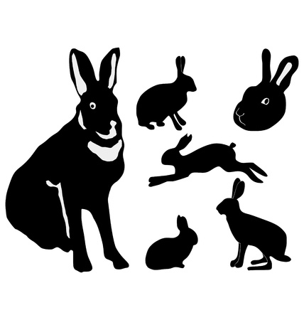 The set of the silhouettes of the hare Vector