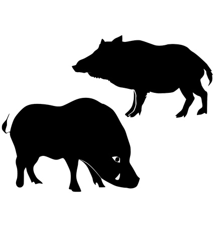 The set of the silhouettes of the wild boar Vector