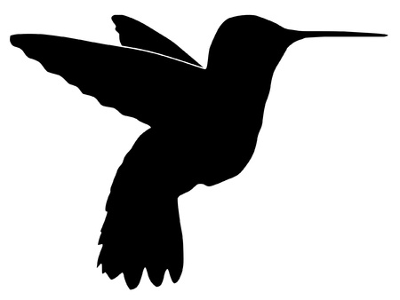 Illustration in style of black silhouette of hummingbird