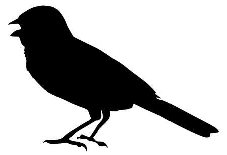 Illustration in style of black silhouette of sparrow Vector