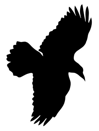 Illustration in style of black silhouette of raven Vector