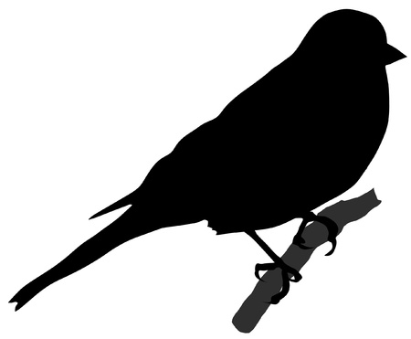 Illustration in style of black silhouette of chaffinch Illustration