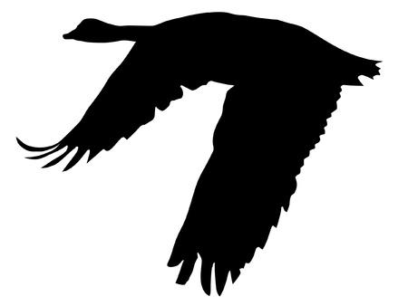 ガチョウの黒いシルエットのスタイルの図