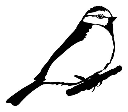 tit: Illustration in style of black silhouette of tit