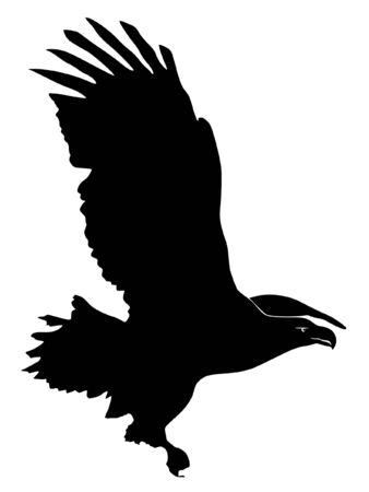 sky dive: Illustration in style of black silhouette of Sea-Eagle Illustration