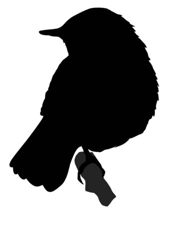 Illustration in style of black silhouette of nightingale Vector