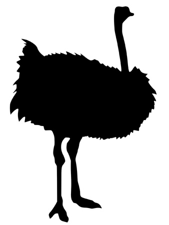 Illustration in style of black silhouette of ostrich