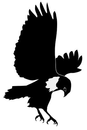 Illustration in style of black silhouette of buzzard Vector