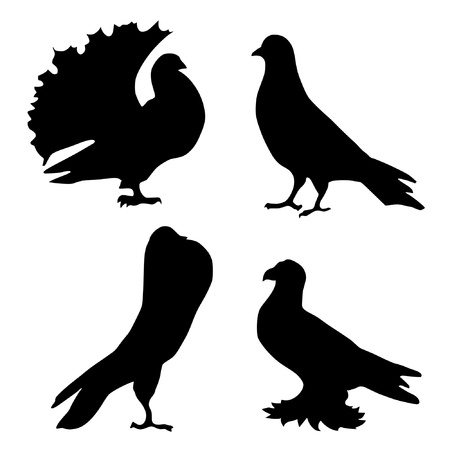 Illustration in style of black silhouette of pigeons Vector