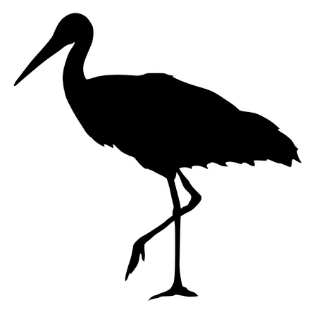black stork: Illustration in style of black silhouette of stork