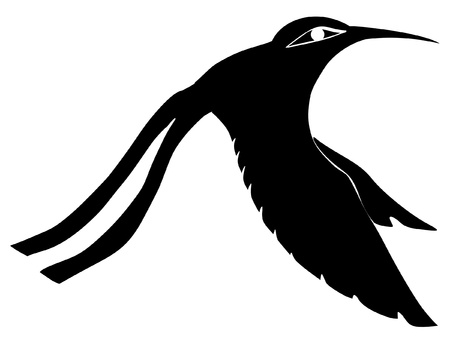 Illustration in style of black silhouette of colibri Vector