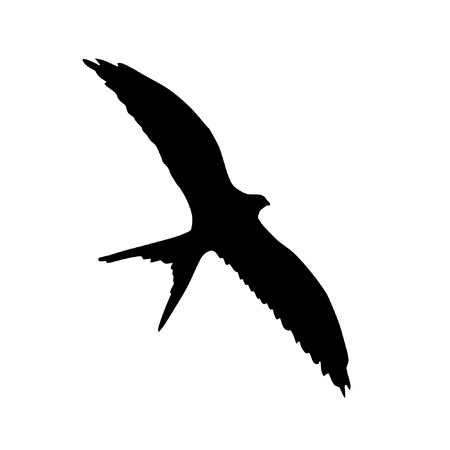 Illustration in style of black silhouette of flying swallow