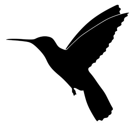 Illustration in style of black silhouette of colibri