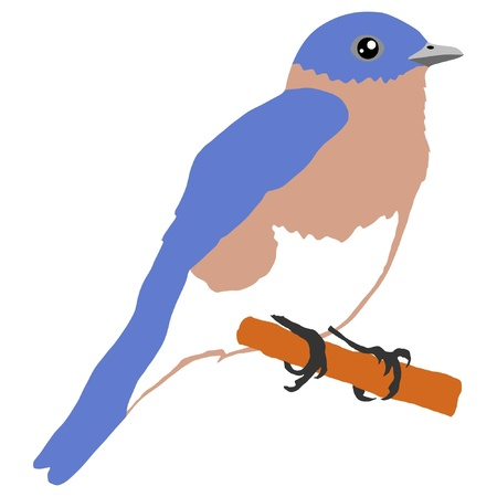 Illustration in style of colored silhouette of bluebird