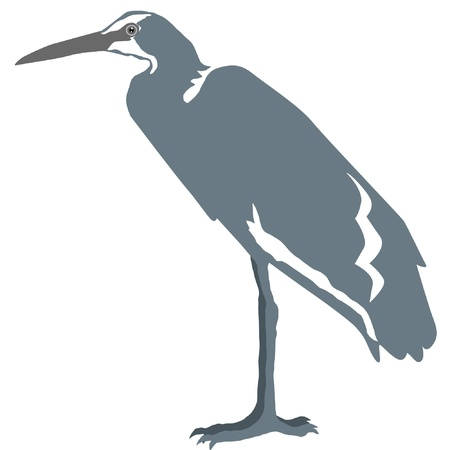 Illustration in style of colored silhouette of heron Vector
