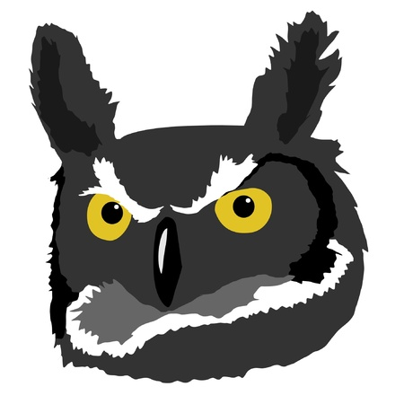 Illustration in style of colored silhouette of owl Vector