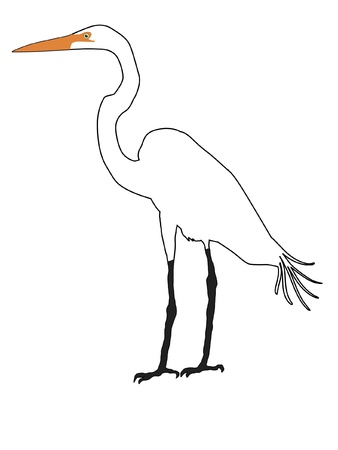 Illustration in style of colored silhouette of white heron Vector