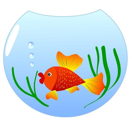 poisson aquarium: Une illustration color�e d'un poisson d'aquarium Illustration