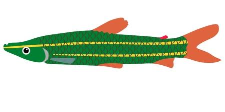 One colored illustration of a aquarium fish Stock Vector - 11611509