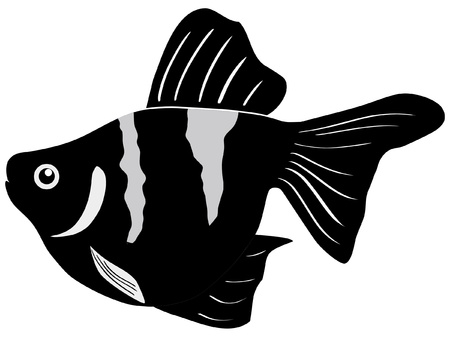 One colored illustration of a tropical fish Stock Vector - 11611506