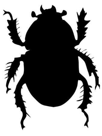 stercorarius: One illustration of the silhouette of dor or Geotrupes stercorarius