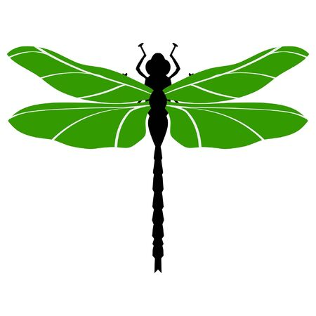 A colored illustration of insect serie. Dragonfly Stock Vector - 11611519