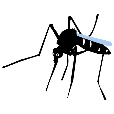 A colored illustration of insect serie. Mosquito Vector